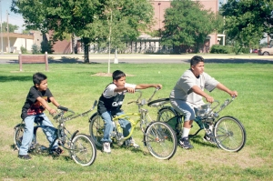 40-lowrider-bikes