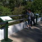 bridge6-150x150
